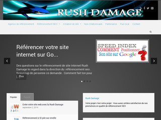 Détails : Rush Damage : Consulting SEO au pays basque